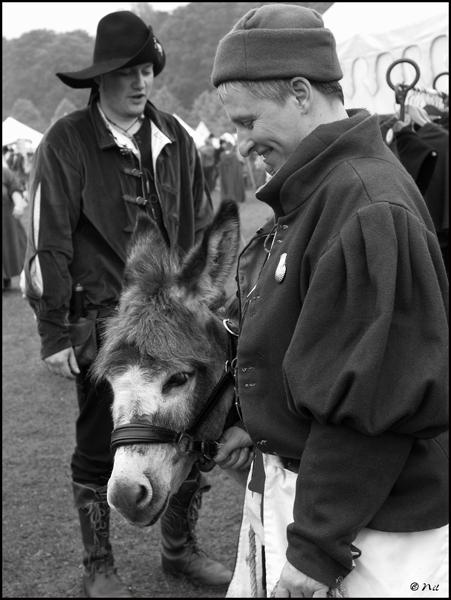 donkey-blogsize