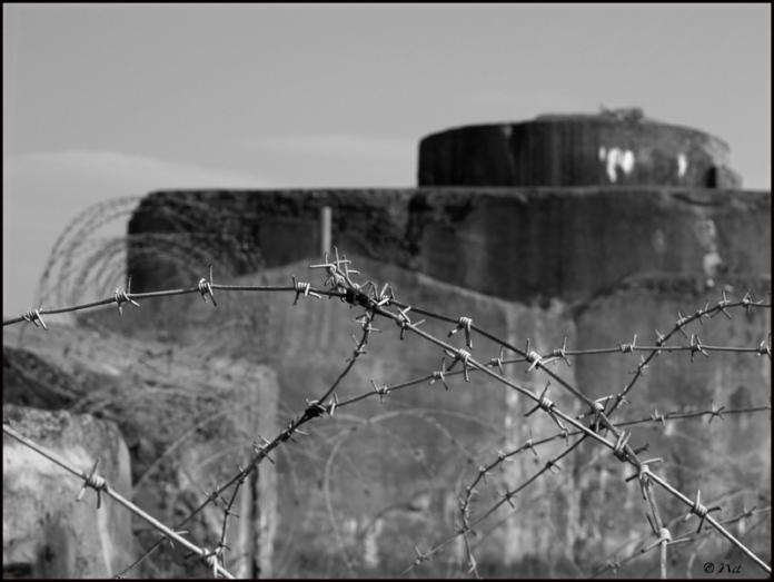 Bunker3 blogsize