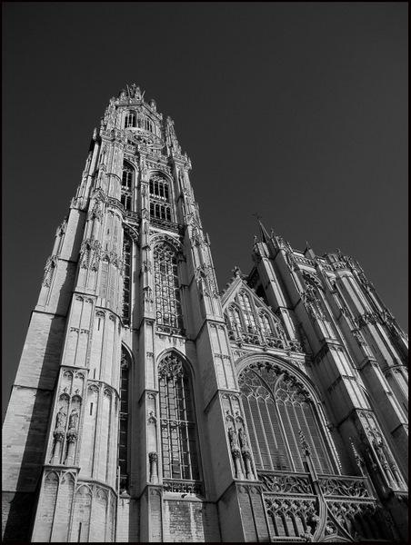 Kathedraal sept