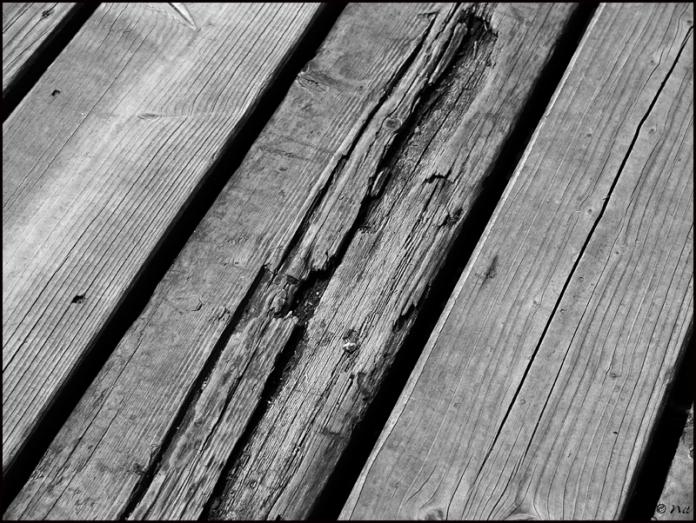 Plank blogsize